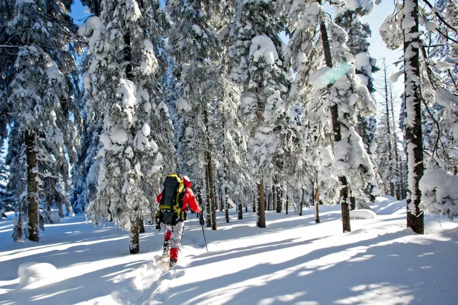 Snowshoer in Backcountry Breckenridge